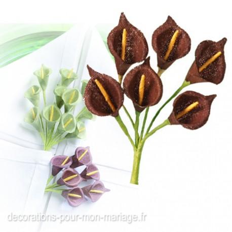 24 mini arums marron