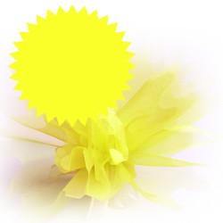 tulles dragées jaune