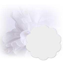 10 tulles intissés blancs
