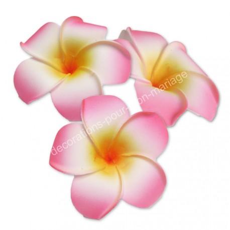 Fleur exotique rose