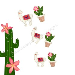 9 confettis lama cactus