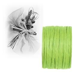 Ruban paper raphia vert