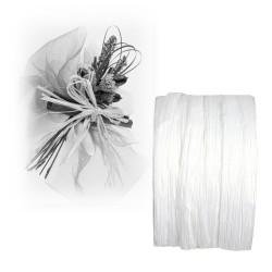Ruban paper raphia blanc