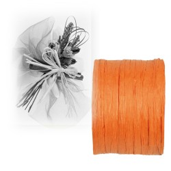 Ruban paper raphia orange