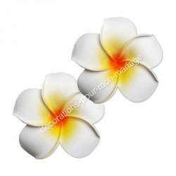 Fleur exotique blanche