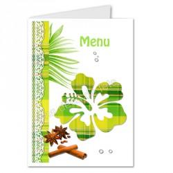 menu déco hibiscus anis