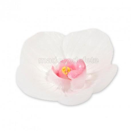 Bougie orchidée x1