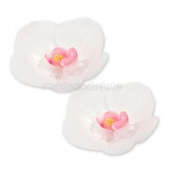 bougie orchidée blanche x2