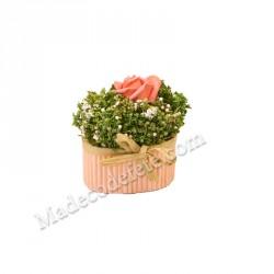 Compo fleurs séchées rose pot ovale
