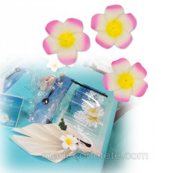 6 fleurs tiaré rose adhésives