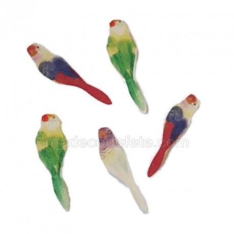 Confettis mini-perroquets exotiques