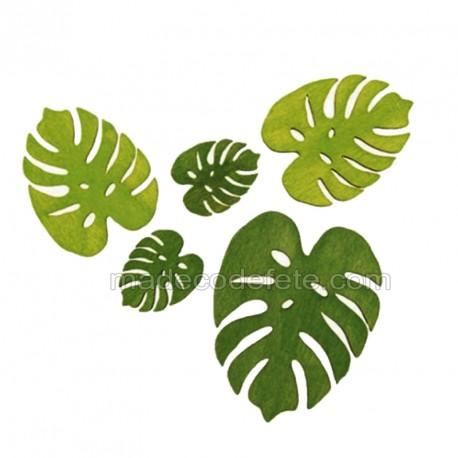 Sachet feuilles philo lot de 10