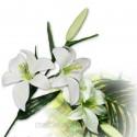 Fleurs de lys artificiel blanc