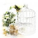 Cage oiseau modèle L