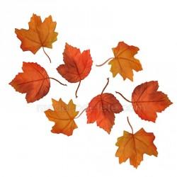 Feuilles d'automne x 12