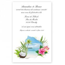 Carton repas carte Guyane