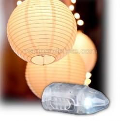 Led pour lanterne