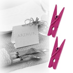 24 mini-pinces porte-nom fuchsia