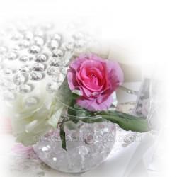 Perles d'eau transparente déshydratées  50 g