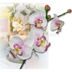 Branche orchidées blanches coeur rose