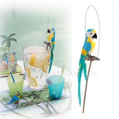 perroquet bleu jaune sur perchoir