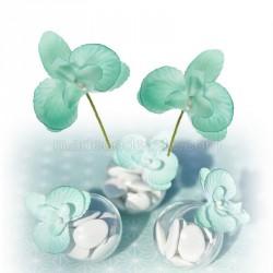 6 mini-orchidées jade